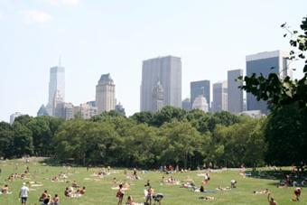 New york d for Affittare appartamento a new york
